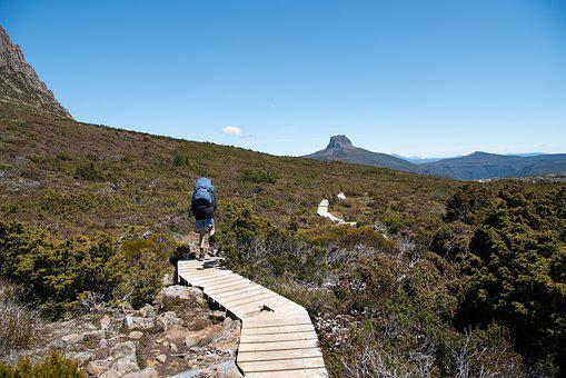 Overland Track, Tasmania, Wilderness, Nature, Outdoors