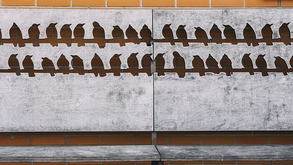 Art, Decoration, Street Art, Wooden Bench, Decorative
