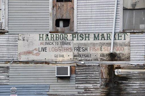 Port, Fish, Old, Fish Market, House Facade, Shield