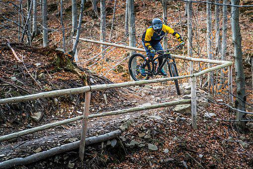 Mtb, Enduro, Bike, Sport, Cyclist, Nature, Extreme
