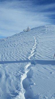 Hiking, Winter, Snow, Trace, Nature, Landscape