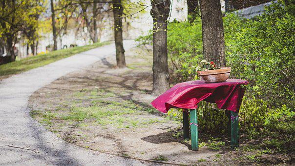Bench, Park, Tree, Table, Nature, Forest, Grass, Green