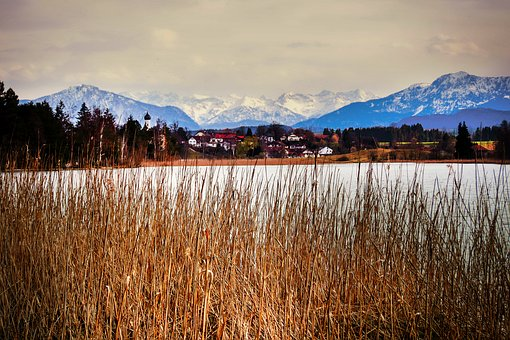 Alpine, Panorama, Reed, Bank, Lake, Nature, Landscape