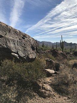 Arizona, Desert, Landscape, Mountain, Rock, Cactus