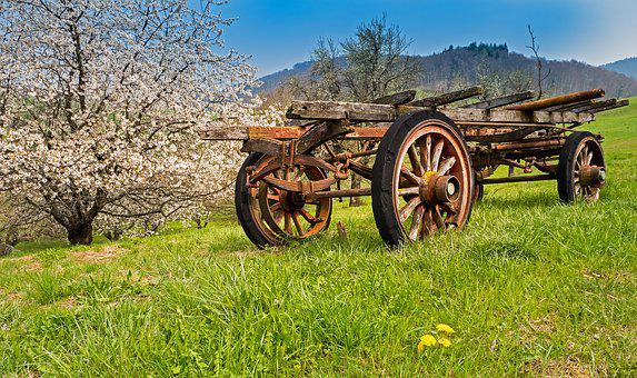 Old Cherry Trees, Dare, Agriculture, Transport, Spokes