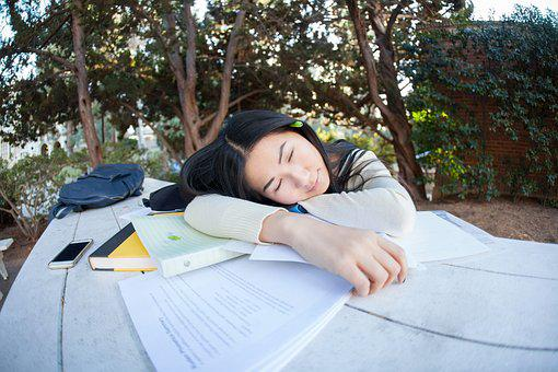 Student, Girl, Study, Pupil, Tired, Woman, Park