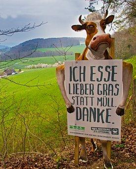 Cow, Warning Sign, Warning, Waste, Garbage