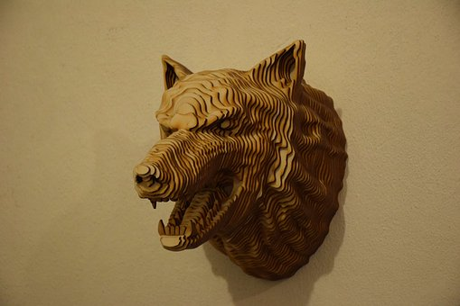 Head, Wolf, Tree, Animals, Wall, Living Nature