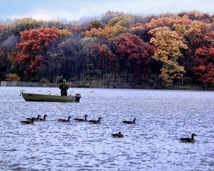 Boat, Fish, Autumn, Ducks, Fishing, Water, Fisherman