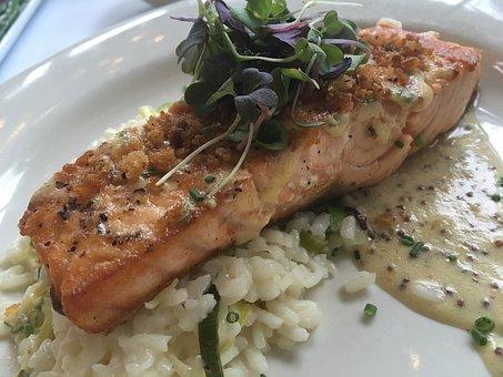 Salmon, Seafood, Fish, Food, Fresh, Gourmet, Healthy