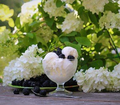 Ice Cream, Food, Plate, Sweet, Dessert, Fruit, Jam