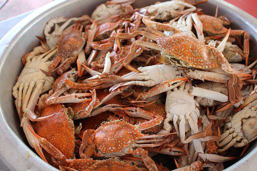 Crab, Food, Dinner, Lunch, Seafood, Meal, Sea, Shell