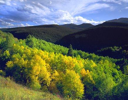 Colorado, Aspen, Mountain, Notch Mountain, Wilderness