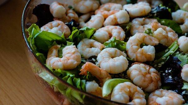 Salad, Shrimp, Lettuce, Food, Seafood, Green, Meal
