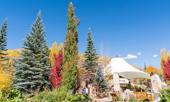 Vail, Colorado, Architecture, Ford Park, Nature, Usa