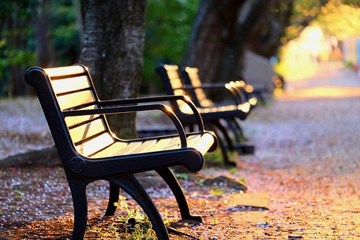 Park, Bench, Sunset, Trees, Twilight