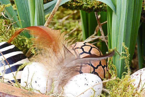 Easter Eggs, Easter Nest, Easter, Egg