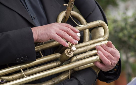 Musician, Baritone, Instrument, Music, Concert