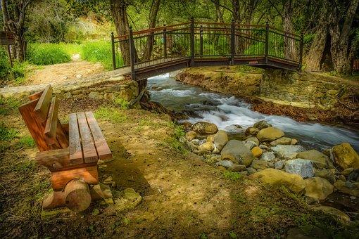 Stream, Creek, Scenic, Bridge, Bench, Nature, Woods