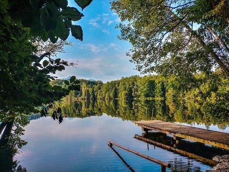 Web, Lake, Tüttensee, Water, Nature, Landscape, Rest