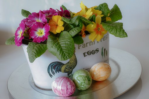 Easter, Egg, Primroses, Spring, Colorful, Cheerful