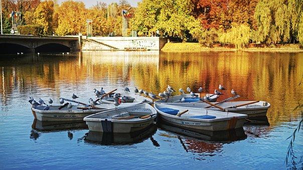 Landscape, Nature, Trees, Autumn, Colors, Boats, Birds