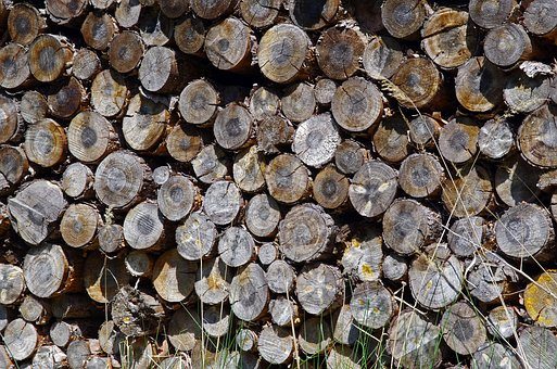 Wood, Holzstapel, Firewood, Storage, Stacked Up, Stock