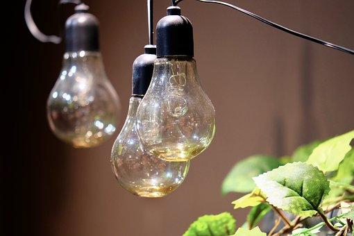Light Bulbs, Green, Interior, Ideas, Grasses