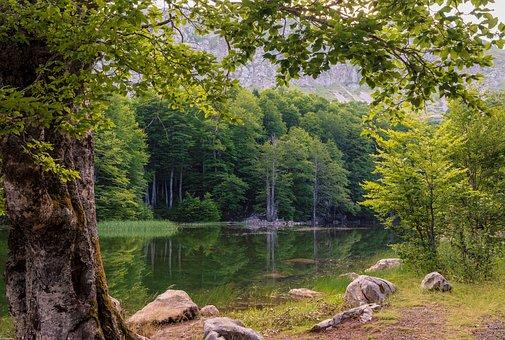 Green, Mountain, Landscape, Mountains, Valley, Sky