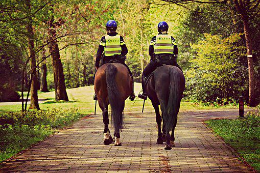 Mounted Police, Horse, Rider, Law, Safety
