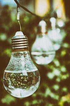 Light Bulb, Water, Energy, Nature, Environment, Ecology