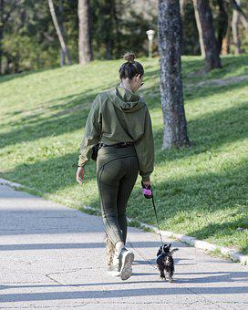 Girl, Woman, Young, Purse, Dogs, Walk, Relaxation