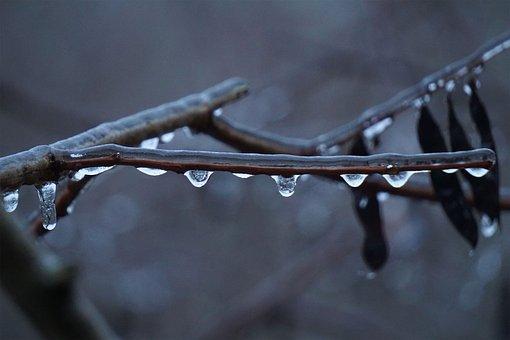 Ice, Rain, Nature, Winter