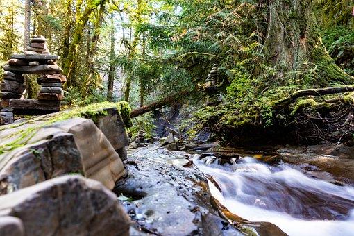 River, Creek, Water, Nature, Landscape, Stream