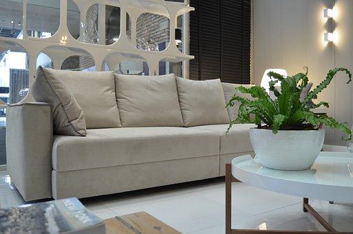 Home, Luggage, Sofa, Furniture, Decoration, Design
