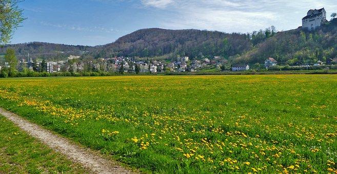Landscape, Switzerland, Aargau, Castle-wildegg, Meadow