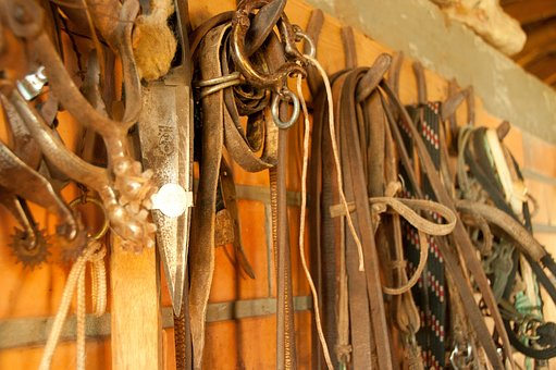 Harnesses, Cell, Ropes, Leather, Horse