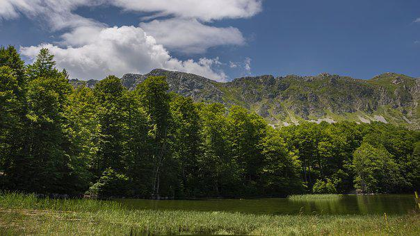 Green, Mountain, Landscape, Nature, Mountains, Valley