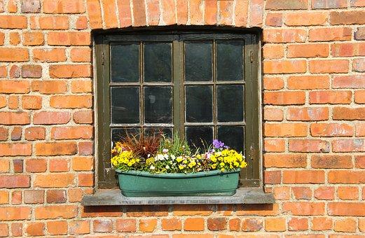 Window, Box, House, Flowers, Summer, Decoration