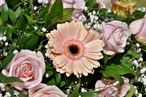 Gerbera, Arrangement, Floral Arrangement, Bouquet