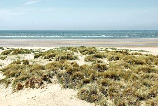 The Touquet, Beach, Dunes, Oyats, Wild, Coastline, Sand
