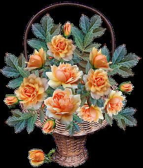 Roses, Flowers, Basket, Arrangement, Garden, Nature