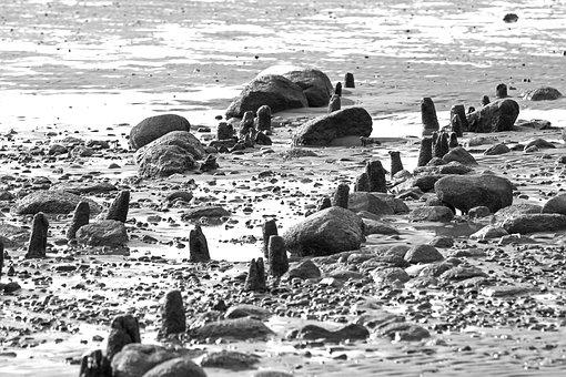 Sea, The Seabed, Sand, Stone, Water, Poles, Coastal