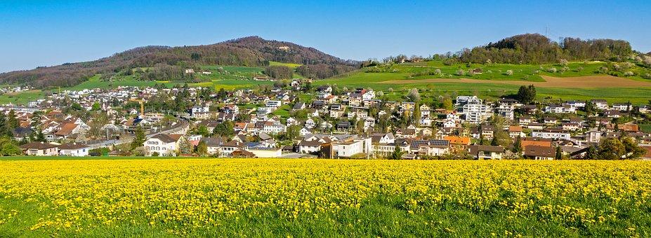 Landscape, Sea Of Flowers, Blütenmeer, Wild Flowers