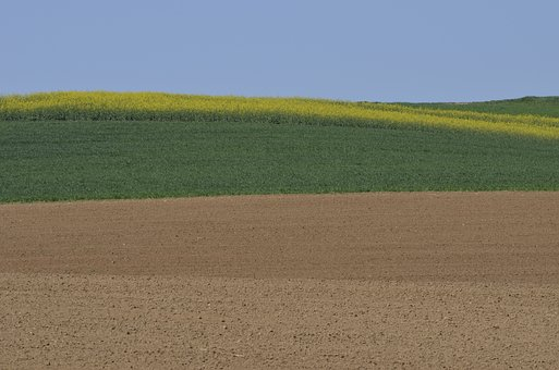 Spring, Fields, Agriculture, Sky, Rural, Arable Land