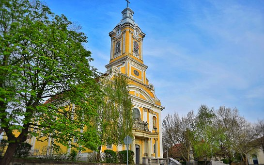 Church, Abony, Yellow, Nature, Flower, Color, Spring