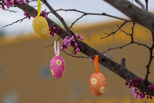 Easter, Eggs, Happy, Colorful, Color, Colored, Spring