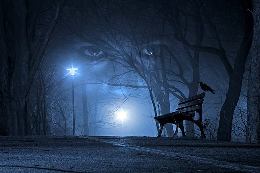 Eyes, Night, Road, Woman, Crow, Forest, Mystic, Gothic
