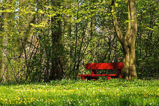 Red Bank, Park Bench, In The Park, Bank, Rest, Nature
