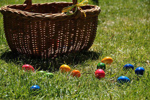 Easter, Search, Eggs, Collect, Spring, Habit